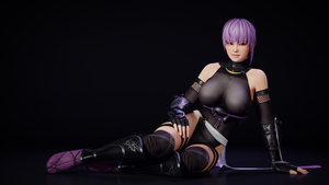 Ayane Ninja Outfit by Chrissy-Tee