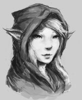 Hooded Elf Portrait by JamesExcalibur
