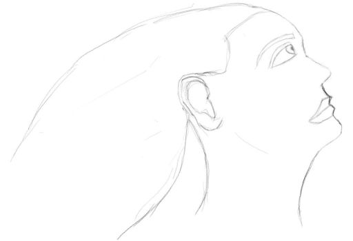 A Quick Female Profile Sketch for Digital Painting by mysolublefish