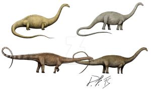Diplodocus over the centuries by Pachyornis