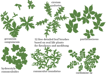 Detailed Leaf Brushes for firealpaca and medibang by fabianclasson