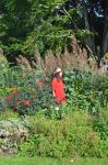 Coombe Wood Summer Border With Mrs a* by aegiandyad