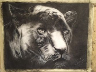Panther charcoal by fangy89