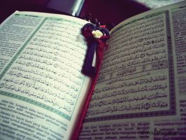 The Holy Quran by alyanayla