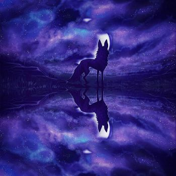 Reflections by MischievousRaven