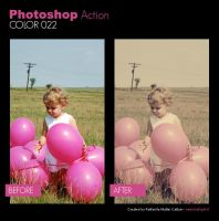 Photoshop Action - Color 022 by primaluce