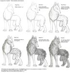 Traditional Fur Tutorial by deadlights11