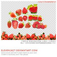 110427_strawberry19_by_eleven by eleven1627