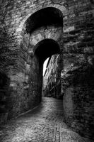 Entrance by OlivierAccart