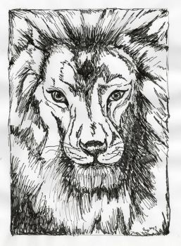 Lion in ink by ATatteredCanvas