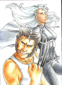 Wolverine and Storm by Aegle