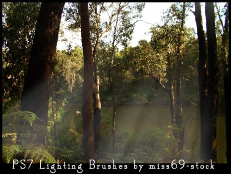 Lighting brushes by miss69-stock
