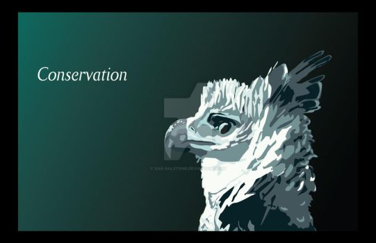 Harpy Eagle Conservation by Xan-Salstone