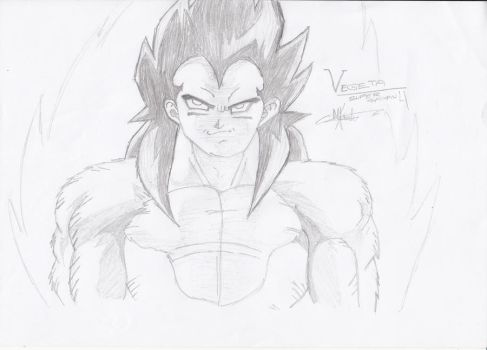 Vegeta ssj4 by freddie3star