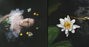 Diptych: Water Flower by NataliaDrepina