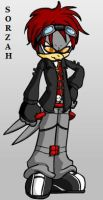 Sorzah the Demon Hawk--NEW VER by ParkesietheHedgehog