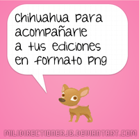 Chihuahua png by MiliDirectionerJB