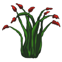 Ocotillo by ReapersSpeciesHub
