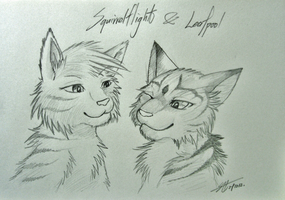 Warriors : Squirrelflight and Leafpool by Marshcold