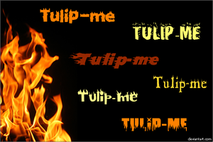 Flame Fonts by Tulip-me