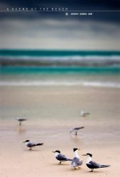 A Scene At The Beach by Saurav
