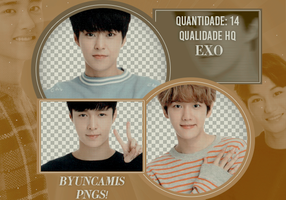 EXO #50 | PNGS by fairyixing
