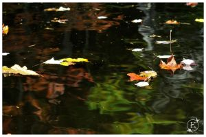 Ripples Of Foliage by EsBest
