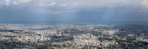 Panoramic view of Sapporo by Sinto-risky