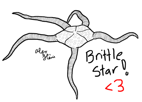 Brittle Star by Saxophlutist
