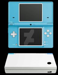 My Nintendo DSi Project  by FlipboyProduction