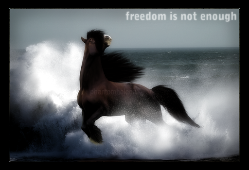freedom is not enough. by phantomhelena