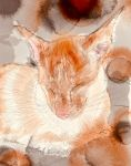 Red Point Siamese by KateHodges
