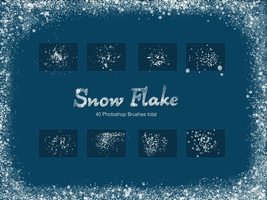Snow Flake Brushes by imakestock
