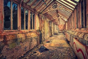 50 Shades Of Decay by Matthias-Haker