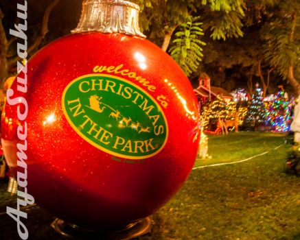 Welcome to Christmas in the Park 2016 by ayamesuzaku