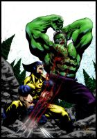 hulk vs wolverine COLORS by TheNewestRedRanger