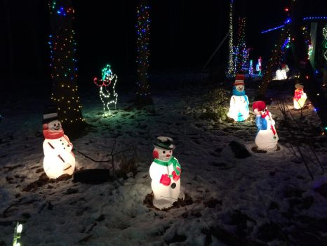 Snow Man Statues by pupshackle