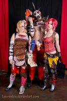 Borderlands 2 by Laurentea