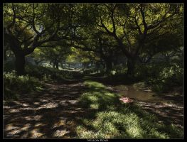 The Willow Road by ArthurBlue