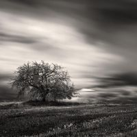 Open space VII by DenisOlivier