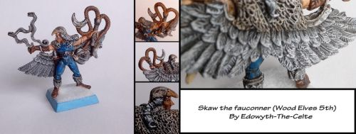 Skaw the fauconner by Edowyth-The-celte