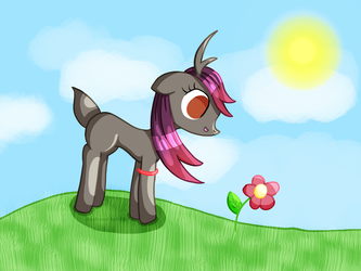 Vixy and a flower by Dash-and-her-life