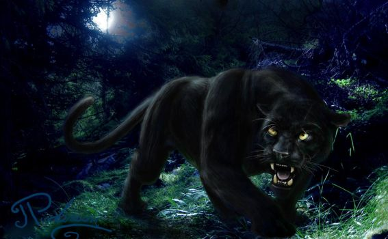 Black Panther in Forest by artbyjpp