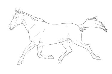 Standardbred Lineart by Tobiteus