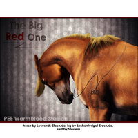 The Big Red One by Explicit18