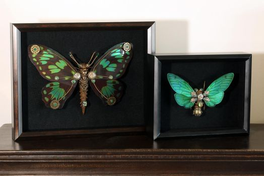 Framed Steampunk insect sculptures by CatherinetteRings
