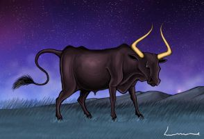 Taurus by Louisetheanimator