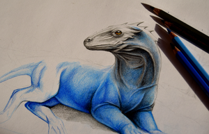 Dragon - WIP by AiraCousland