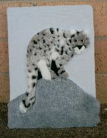 Pattable picture- snow leopard by Rahball