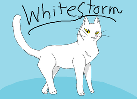 sss warrior cats Whitestorm by mootoss